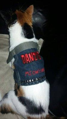 Danzig Cat Vest
